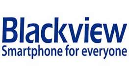 Black view logo_320