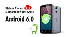 vienna-android 6.0-0810