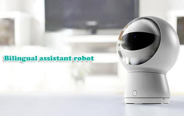 Moorebot MB01