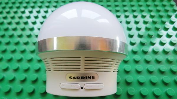 Sardine A3