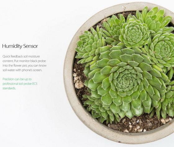 Xiaomi Plants