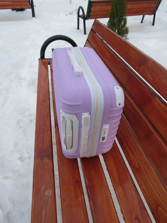 Suitcase Cute Trolley