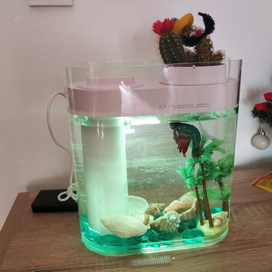 Geometry Ecological Fish Tank